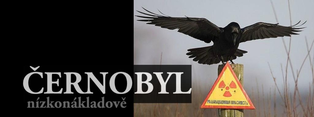 Černobyl nízkonákladově - fotografie havrana s rozpjatými křídly